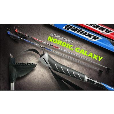 Палки лыжные ISG Galaxy (Алюминий) (фото, вид 3)